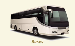 Coach buses, mini bus, limo bus rental vehicles at Classic Wedding Car