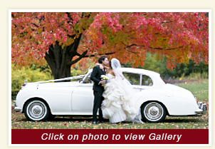1962 Rolls Royce luxury rental vehicle at Busse Woods, Elk Grove Village Illinois