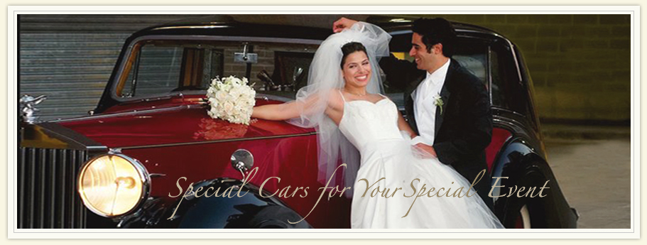 Rental Wedding Dresses In Chicago Bridesmaid Dresses